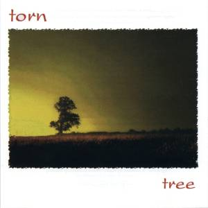 Tree by Torn