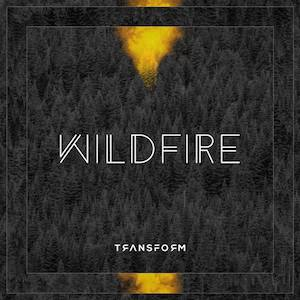 Wildfire by Silver From The Flames